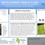 Metals In Moss